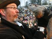 Groundhog Marmota