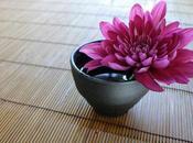 Curso On-line Feng Shui para Abundancia