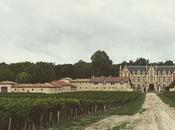 Visitando Burdeos: vino, dunas, viñedos, ostras vino.