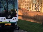 servicio autobús conductor eléctrico recorre pública holandesa