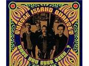 Turtle Island Quartet: Have Ever Been...? (Telarc Indigo, 2010)