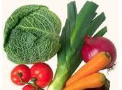 Betacaroteno Antioxidante Primordial Alimentos