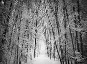 Solsticio Invierno