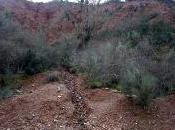 lluvia cambia look Sierra Norte
