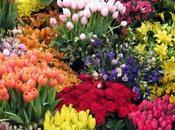 Jardines flores artificiales