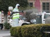 Sanitizan Luis Potosí para evitar influenza