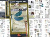 DISPONIBLE: Libélulas. Introducción especies ibéricas