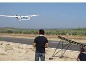 Drones para controlar intrusos olivar