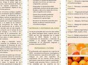 Curso online citricultura ecológica