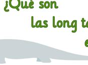 "¿Qué long tail palabras clave ""cola larga""?"