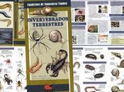 DISPONIBLE: Invertebrados terrestres. Introducción especies ibéricas