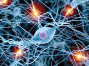 Innovación células madre puede ayudar luchar contra parkinsón
