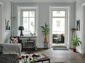 Plantas decoración apartamento