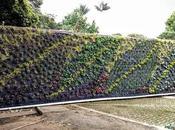 Nuevo curso Bogotá: sistemas vegetales como piel edificación