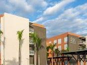 Reconocen excelencia hoteles Puntacana Resort Club