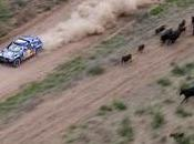 Dakar 2011: Sainz imparable rally