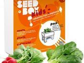 SeedBox Kids, huerto urbano para niños