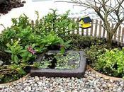Visto Internet: Jardines miniatura