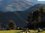 Tierra Estella: Ecoexperiencias Tierras Iranzu