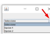 Básico JComboBox Java