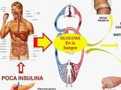 Descifran Rompecabezas Diabetes tipo