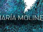 María Moliner, Importancia Libreto Ópera