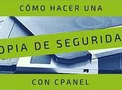 Cómo hacer copia seguridad cPanel