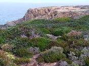 Costa sudoeste Alentejo experiencia Zmar, Portugal