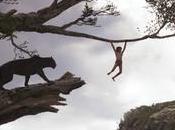 Crítica libro selva Favreau