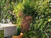 formas tener jardín vertical