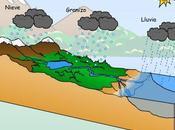 Recursos para trabajar importancia agua