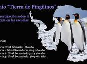 """Premio """"tierra pingüinos"""" investigación sobre antártida escuelas"""