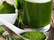 Alga espirulina alimento futuro