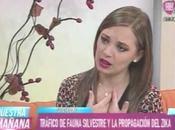 Entrevista Valeria Gonzalez Enrique Richard sobre virus Zika e...