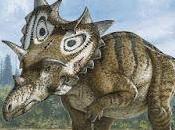 Nuevos dinosaurios ceratopsios