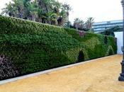 Jardín vertical Cádiz. Parque Genovés.