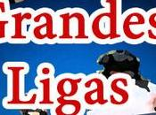Francisco Giants Louis Cardinals Vivo Beisbol Grandes Ligas Domingo Junio 2016