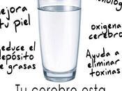 Consecuencias beber agua