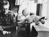 James Dean, gato Marcus Louis