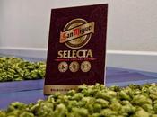 secreto cerveza Selecta: selección mezcla tres lúpulos maltas centroeuropeos