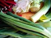 Aprovecha máximo hortalizas