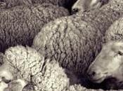 productos nunca sospecharías contienen carne