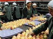 Conservación frutas verduras