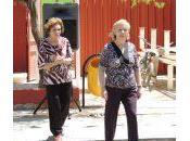Envejecimiento activo éxito saludable: breve historia modelos conceptuales.