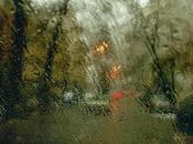 Abbas Kiarostami: fotografía poemas*