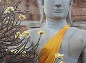 Viajar Tailandia: experiencia