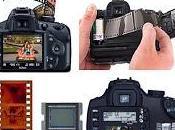 revelado fotografía digital está batiendo todos récords.