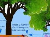 Bancos piedra traviesas madera lilar gestión idea.