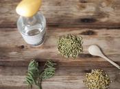 ALKKEMIST, primera ginebra elaborada hinojo marino moscatel.