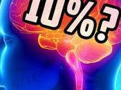 ¿Usamos sólo nuestro cerebro?